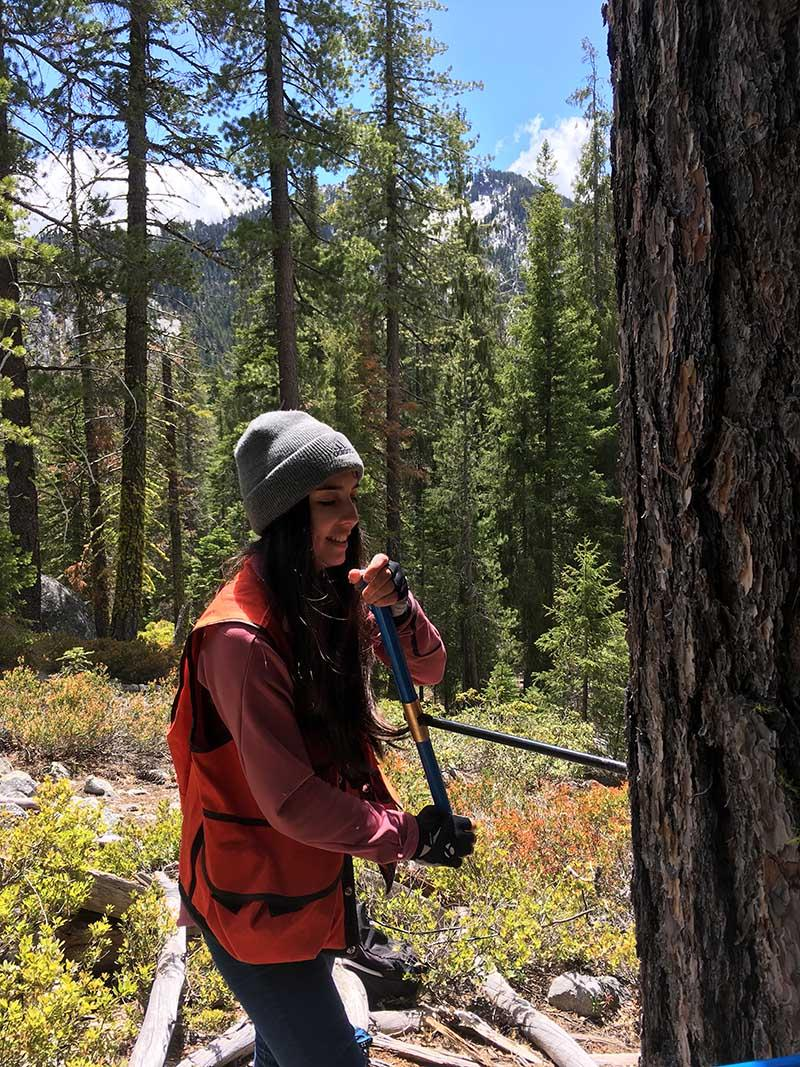 Field work in the Klamath Mountains.